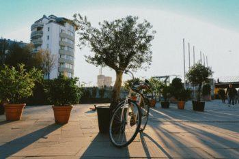 Studietur til Düsseldorf